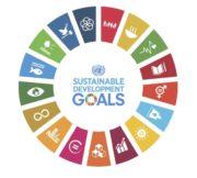Sustainable Development Goals vinden snel hun weg in jaarverslagen bedrijven