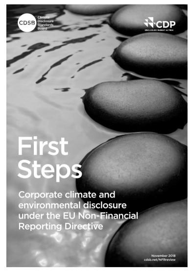 Minder dan de helft van de grootste Europese bedrijven maakt in hun jaarverslag melding van de impact van klimaatverandering